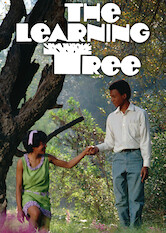 Search netflix The Learning Tree