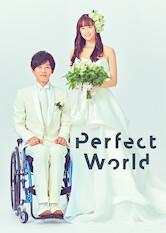 Search netflix Perfect World